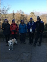 Group of walkers and a dog