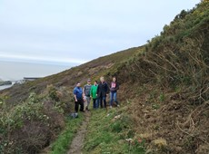Project to improve accessibility in Pen Dinas Hillfort