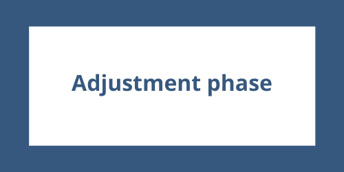 Adjustment Phase