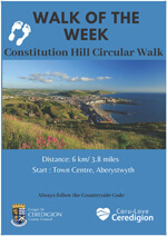 Constitution hill circular walk poster